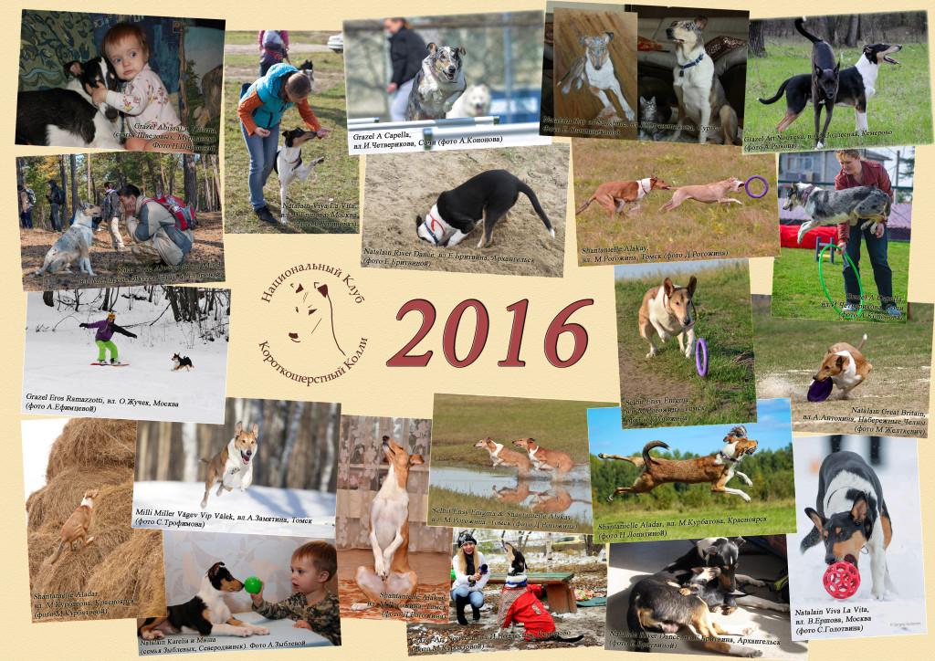 Календарь-2016: Обложка