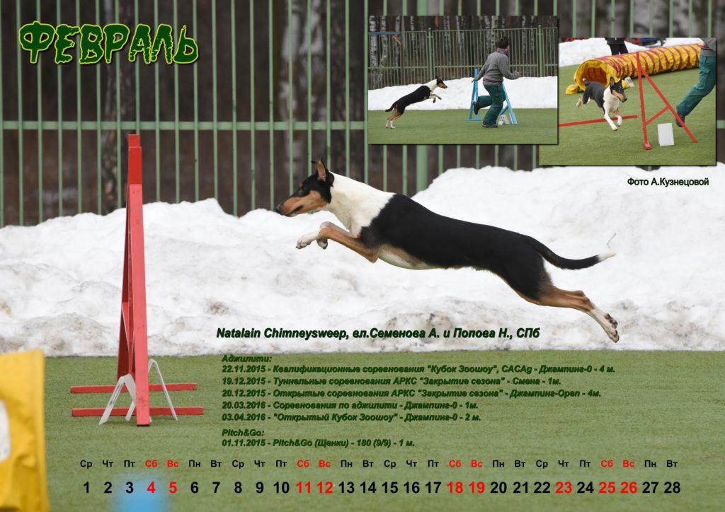 Календарь НКП 2017