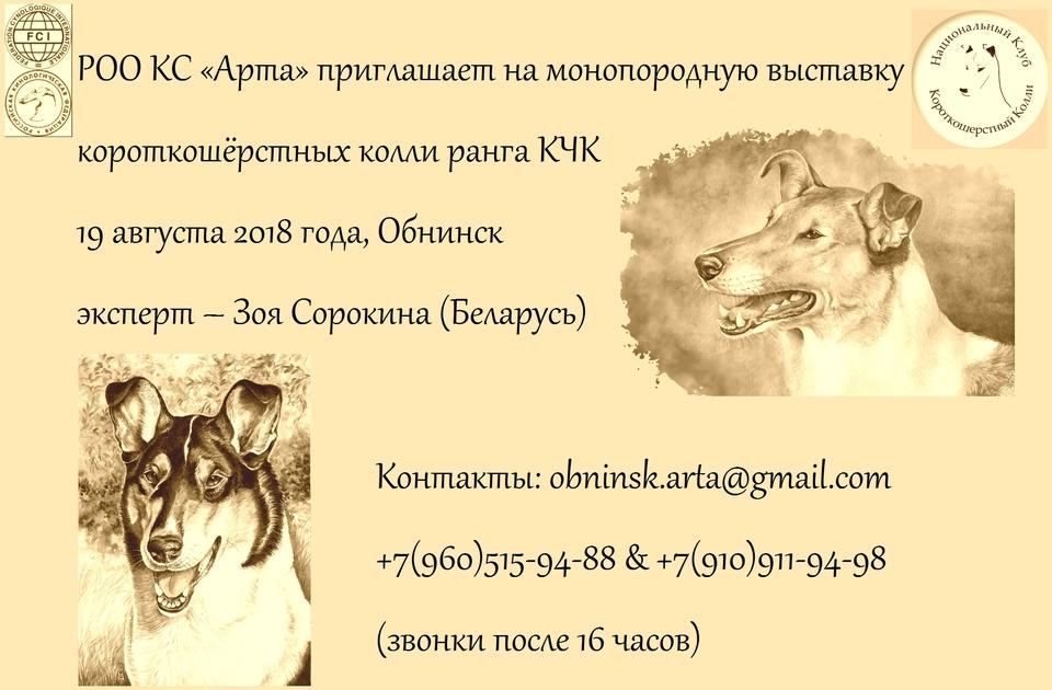 Монопородная выставка ранга КЧК в Обнинске